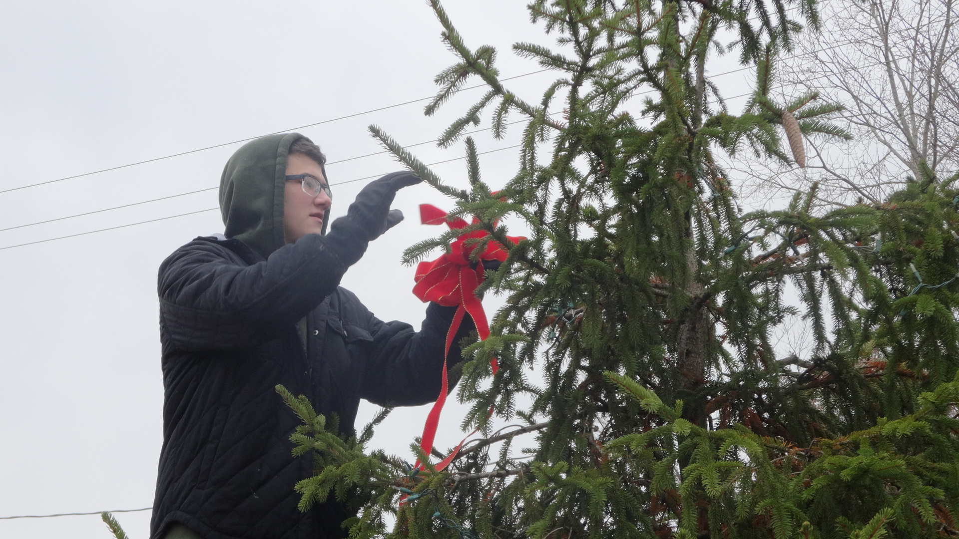 Jarrett Johnson of the Brookfield High School Interact Club affixes bows to a tree on the green in Brookfield Center.