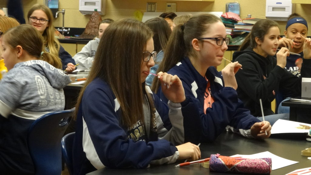 Brookfield Middle School eighth-grade students use straws during an exercise on lung function. Shown are, from left, Alexa Lindholm, Zoe Steele, Sophia Hook and McKyah Graybill.