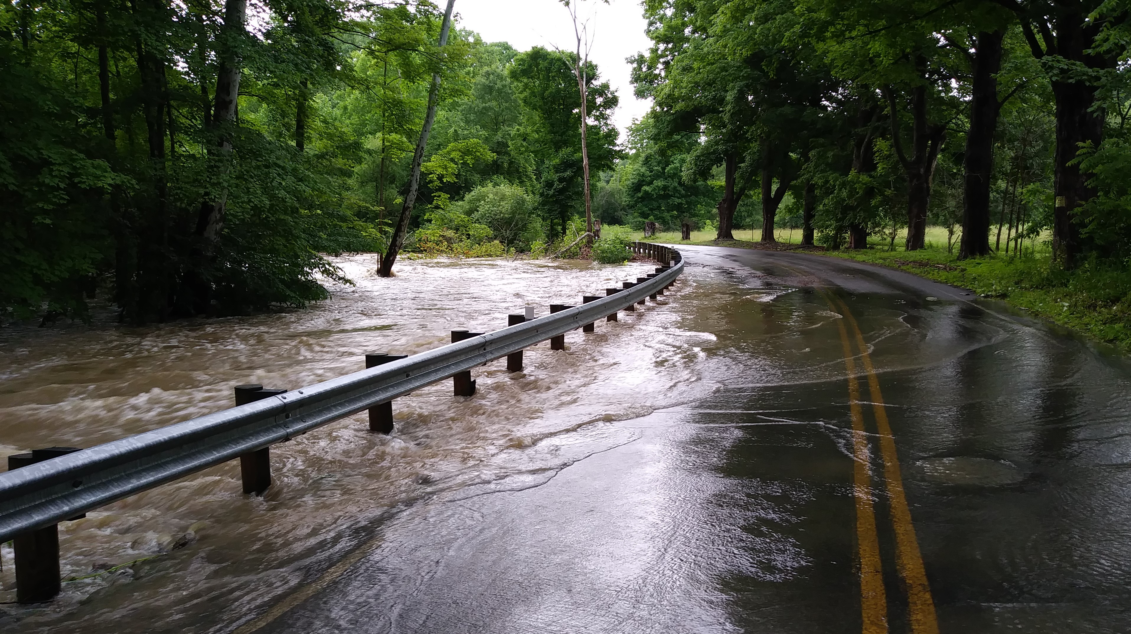 Yankee Run Road
