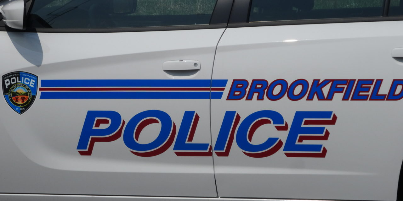 Brookfield Police Department report for 2020