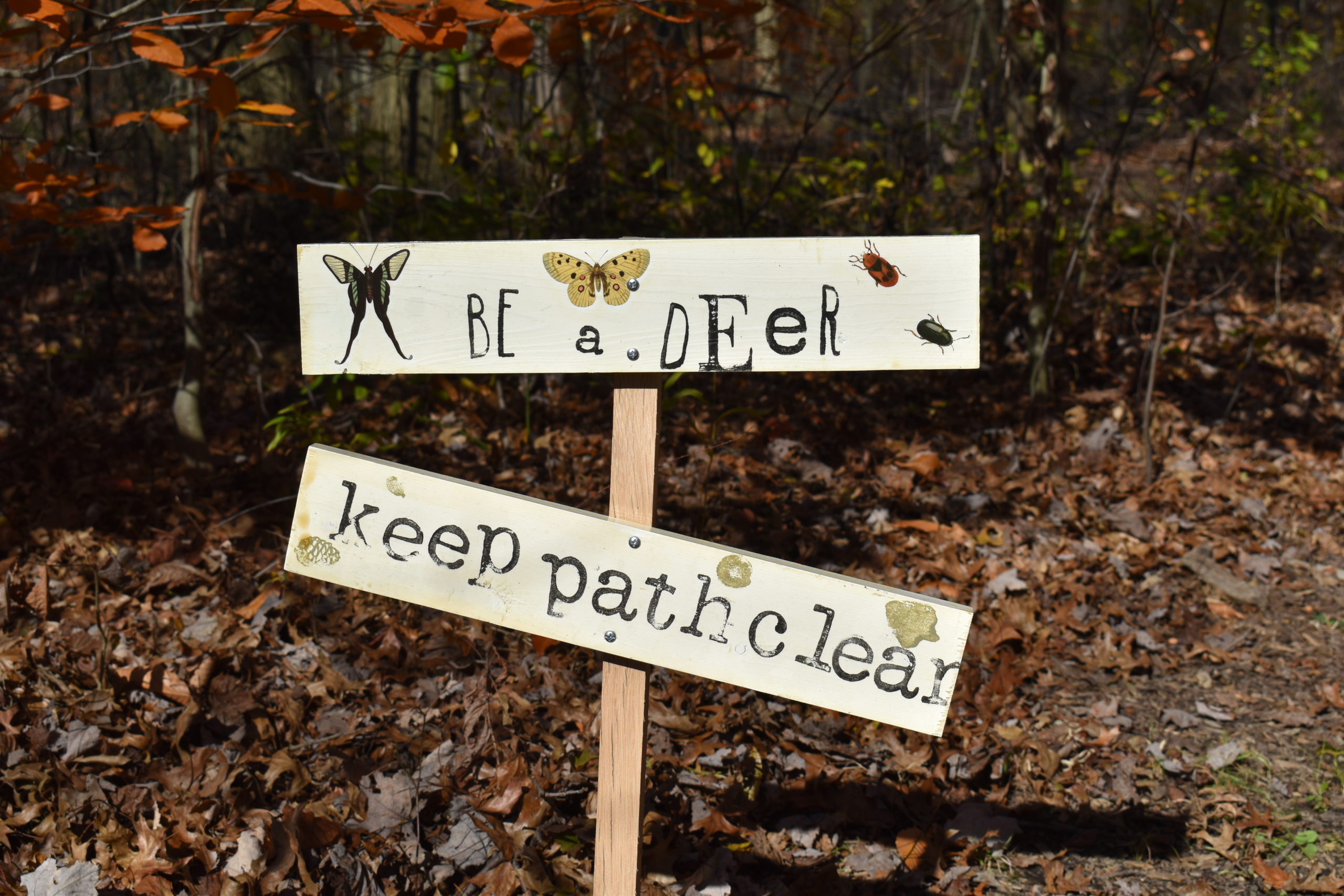 This is one of the signs Girl Scout Troop 80010 put on the trail at Brookfield Township Community Park. NEWS On the Green photo.