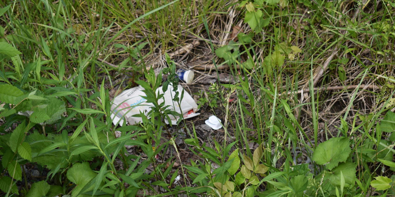 Neighborhood cleanup set for West Hill