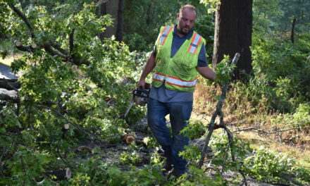 Storm damage reported in Brookfield Township