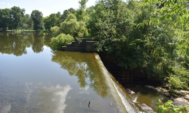 State orders Coalburg dam owners to address problems
