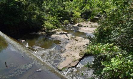 State: Coalburg Lake owner must fix dam