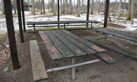 Lees seeks funds to leverage grant for park