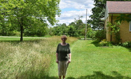High grass dispute leads to neighbor tiff