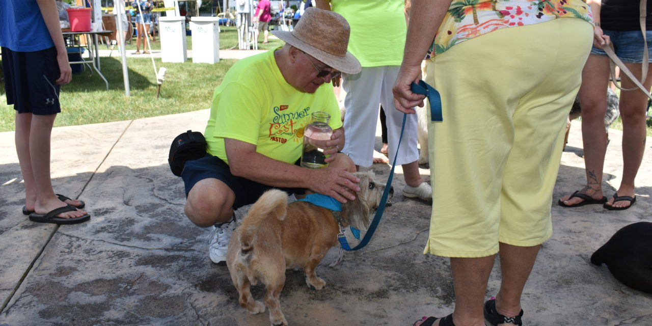 Aug. 15 is Fun Day on the green